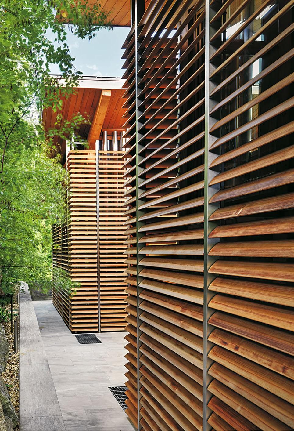Pianifica Il Divisori Per Giardino Foto Di Giardino Idea